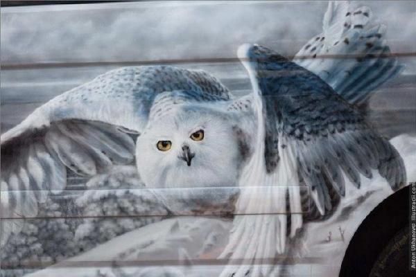 Photorealistic Airbrush Artworks