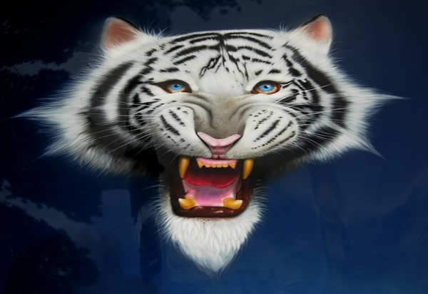 Airbrush White Tiger by MikeLangston