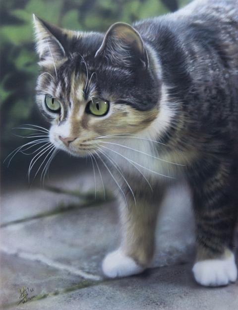 Pets class Holland | Marissa Oosterlee's