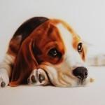 Original Art | Portrait Paintings | Springz Art