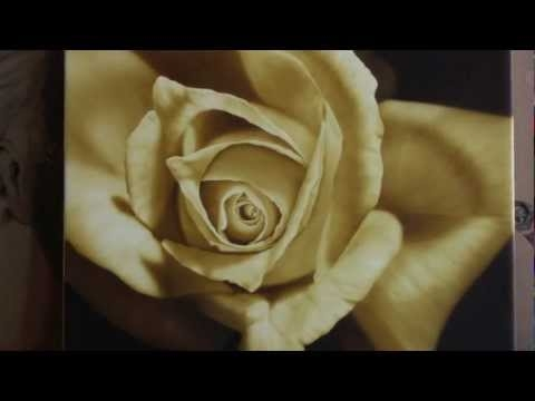 Video Step by step Airbrush Painting of a Rose - Airbrush Videos