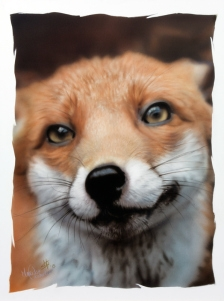 #FuriousAirbrush #RSS Feeds | Pudding the Fox and her new owner