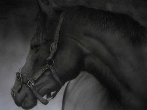 Horse, monochrome airbrush art