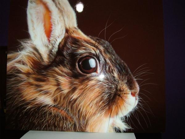 Airbrush photorealistic rabbit on panel - https://neoshka.socialdoe.com/
