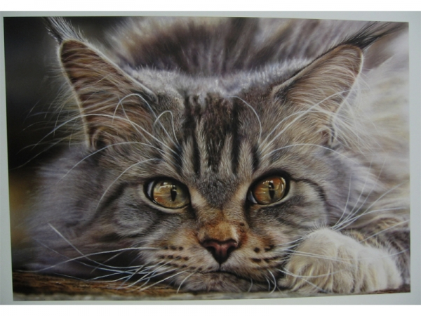 Dutch airbrush: Airbrush art - Favorite Art