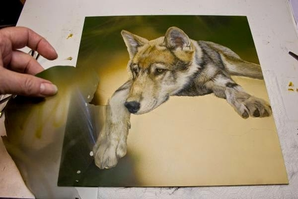 Brenda D. Johnson Studio: Wolf Pup WIP in steps.