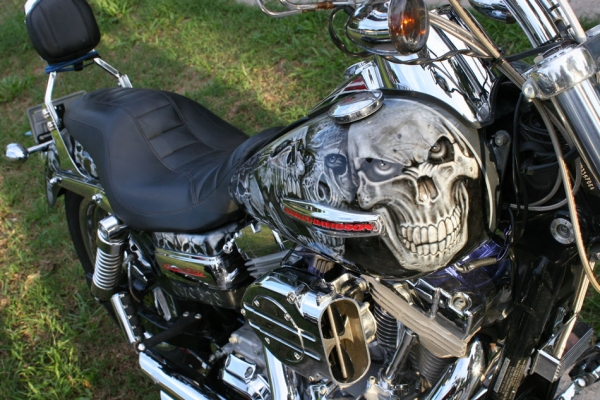 finished skull bike