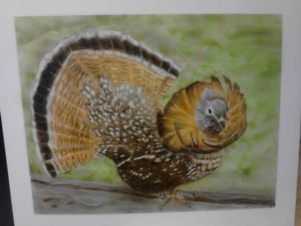 Ruff Grouse airbrushed on carson board