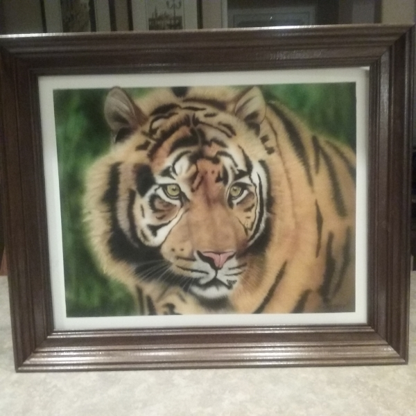Tiger 16 x20 Painted with a badger Krome,candy 2.0 and golden hi flow paint - Basepaint