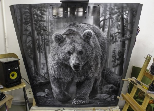 Bear on the Hood - 1 - Airbrush Step by Step
