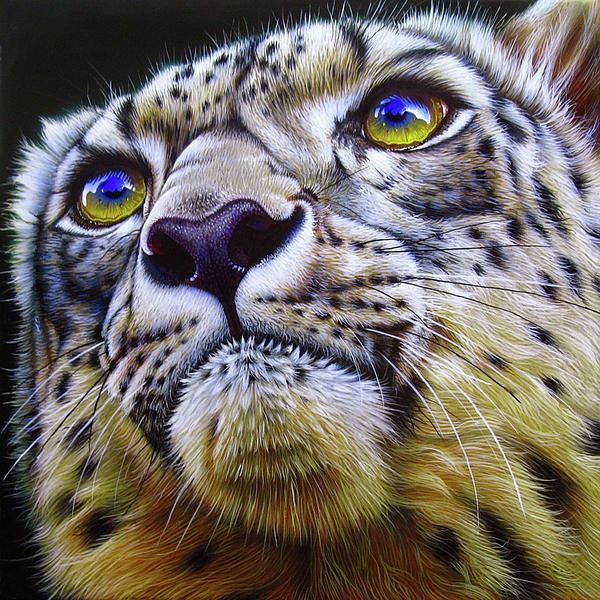 Snow Leopard Painting by Jurek Zamoyski - Snow Leopard Fine Art Prints and Posters for Sale - Top Airbrush Artwork on the Web