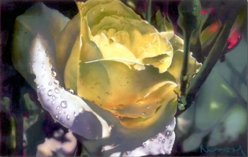 THE COLOR OF SPRING | Noah Fine Art