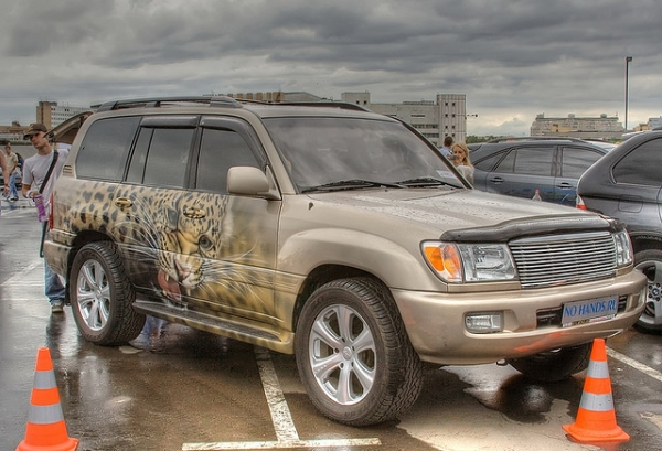 SUV cat Airbrush