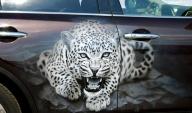 airbrush, car, infiniti, fx, painting, leopard - Airbrush Artwoks