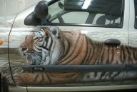 Tiger on Truck - Airbrush Artwoks