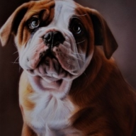Original Art   Portrait Paintings   Springz Art - Fotorealismo