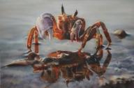 (1) Julia Tapp - Fotorealismo
