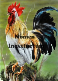 """""""Rooster"""" publication aas step by step in the american magazine """"AIRBRUSH TECHNIQUE MAGAZINE"""" issiue 53 I hope you enjoy it!! - Photorealism"""