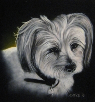 """Dee Jay"" - Portrait of my brothers little dog. 45x50cm - myStuff"