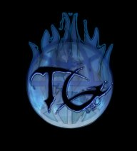 this is my logo for my airbrush company - trife gang clothing
