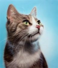 #FuriousAirbrush #RSS Feeds | Animals and wildlife - Fotorealismo