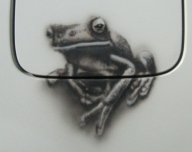 'Lazy Frog' 