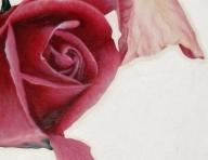 Airbrush photo realism | The organic artist's Blog - Photorealism