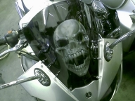 Airbrushed skull windscreen by Jonny5nLala - Airbrush Artwoks