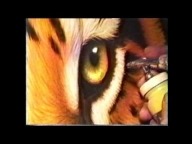 ▶ Tiger eyes.wmv - Jurek - Creative Learning
