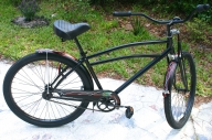 pinstripe on bicycle - Kustom Airbrush