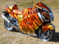 Tiger Busa - Custom Paint Motorcycles