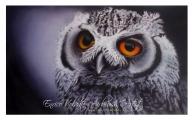 illustration on cardboard - Airbrush Artwoks