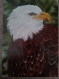 Eagle on Illastration 5X7 board - Basepaint
