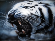 Tiger airbrushing by aiRMaster777 - Kustom Airbrush