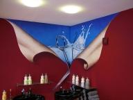 Arbeitsbeispiel-Wandmalerei Airbrush - Airbrush Artwork and Murals