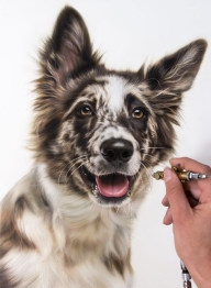 Photorealistic Airbush | Pet Courses Pictures | Foxy Studio - Creative Learning