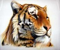 iPaint Airbrush Studio-Home-Pittsburgh,PA - My Paintings