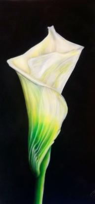 Calla Lily - Airbrush Artwoks