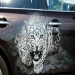 airbrush, car, infiniti, fx, painting, leopard