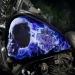 Amazing Phtoralism - Kustom Airbrush HD Tank by anthonyairbrush.com