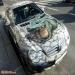Mercedes airbrush alligator