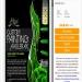 "Free Download Airbrush Stencil Step - ""Custom Ax"""
