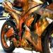 TruFlames bike