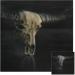 'Buffalo Skull' refurbished, but finished?