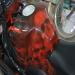 Honda Fireblade, airbrush skulls by emsike
