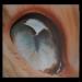 Sergio Buzzi - Airbrush step by step