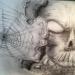 skull69
