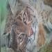 Bobcat 8 x 10,golden high flow,sprayed thru an Iwata HP-CS