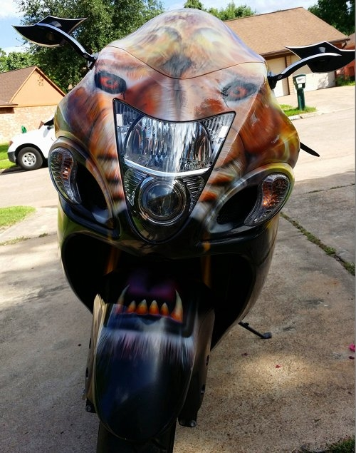 Lion Hayabusa painted by ZimmerDesignZ.com