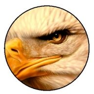 Eagles Eye by Jaime Rodriguez done with Renegade Spirit and Badger Universal - Photorealism